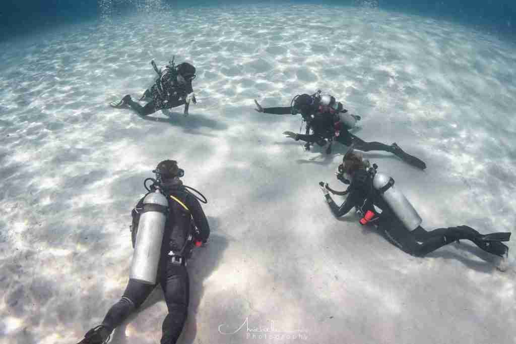Open Water Course in Komodo | Manta Rhei Dive Center